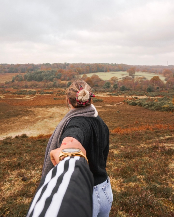 Top Hotels in The NewForest.